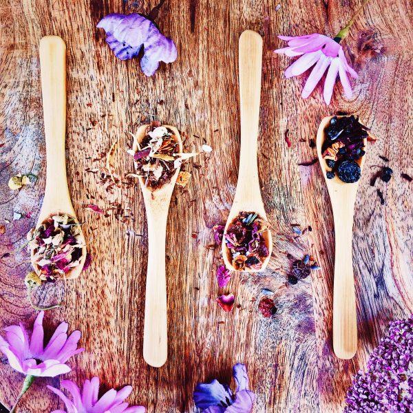 Four teaspoons heaped with the four different tea blends included in this bundle. From left to right: Whispered Wishes herbal blend, Ritual At Dawn rooibos and floral blend, Ritual At Dusk rooibos and spices blend, and Blue Moon berry and floral blend.